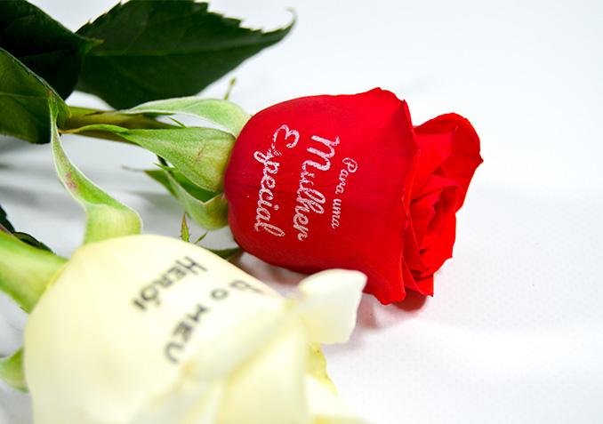 Speaking Roses Florineve